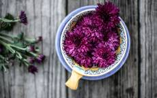 Цветы в чашке, деревянная поверхность