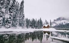 Одинокий дом в снежном лесу