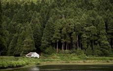 дом интроверта, дом в лесу, одинокий дом