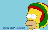Гомер Симпсон наркоман