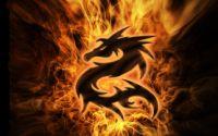 Логотип Дракон в огне