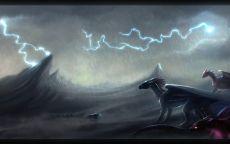 Драконы под дождем