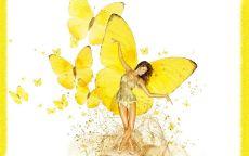 Фея бабочка