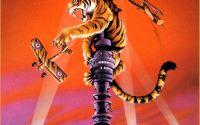 Тигр против самолетов