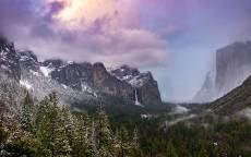 скалы, горы, облака, ели, туман