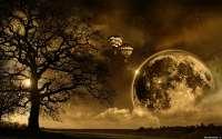 Воздушные шары в ночном небе