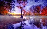 Тихий лес и речка, туман, красота