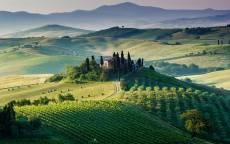 Италия, провинция Тоскана, зеленые поля, виноградники
