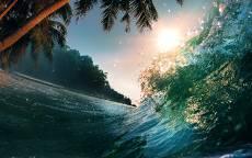Врлна, брызги, солнце, пальмы, джунгли