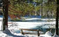 Снег ранней весной в парке