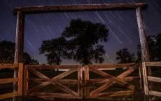 Ночь, звезды, звездопад, деревья, ворота, забор