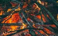 Костер, огонь, угли, ветки, пепел