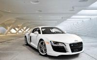 Белая Audi R8