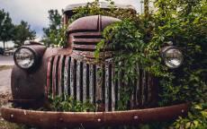 Ржавый, старый, автомобиль, зеленый куст, бампер, фары