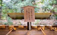 Родник, бамбуковый кран, бамбуковый водопровод