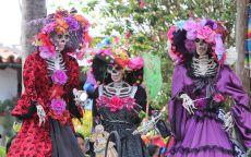 скелеты в женских платьях