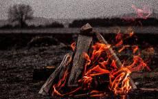 Дрова, пламя, огонь, пикник, природа