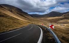 дорога, поворот, разметка, дорожный знак
