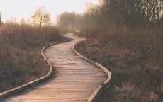 Пустая деревянная дорога в тумане