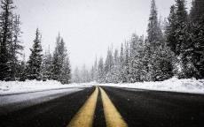 Черная дорога с желтой разметкой в зимнем еловом лесу