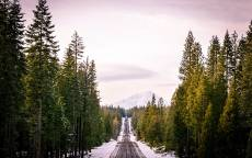Зимняя дорога, снег, еловый лес, гора