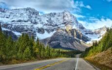 пустая дорога, горы, лес, ель, обочина