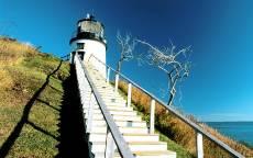 Канада, маяк, лестница к маяку, синее небо, сухое дерево