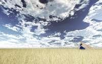 Аниме девушка в поле