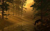Олень на водопое у лесного ручья