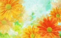 Открытка Цветы желтые