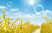 Поздравительная открытка желтые цветы, мыльные пузыри, дорога