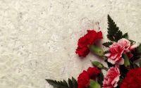Открытка, поздравление, картинка, Букет красных гвоздик