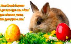 Открытка Пасхальный кролик и яйца