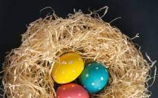 Пасхальные яйца на черном фоне