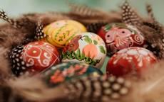 Гнездо с пасхальными яйцами