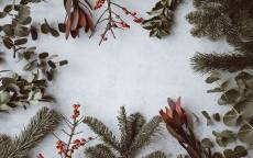 открытка, поздравление, белый снег, новый год, поздравительная рамка