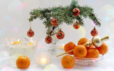 новогодние мандарины под елкой