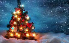 маленькая новогодняя елка в снегу