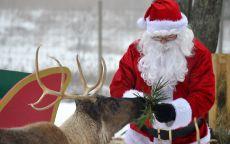 Санта Клаус и красивый олень