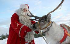 Санта Клаус кормит с руки северного оленя