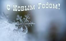 С Новым Годом Снежинка