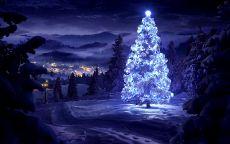 рождественская ель в лесу