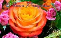 Открытка с Днем Рождения, розы