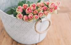 Букет, розы, корзинка, цветы
