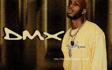 DMX, Raper