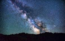Звездное небо, млечный путь, лес, ночь, звезды