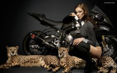 Мотоцикл, девушка, гепард