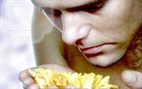 Rammstein - Рамштайн и желтый цветок