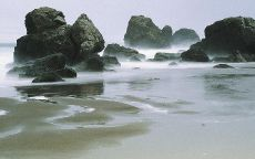 Туманный пляж