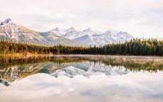 горное озеро, горы, отражение в воде, лес